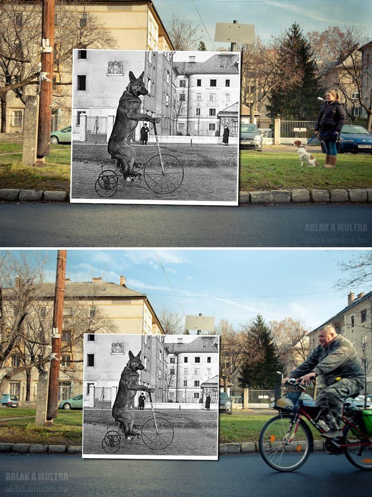Ablak a múltra - Kerényi Zoltán